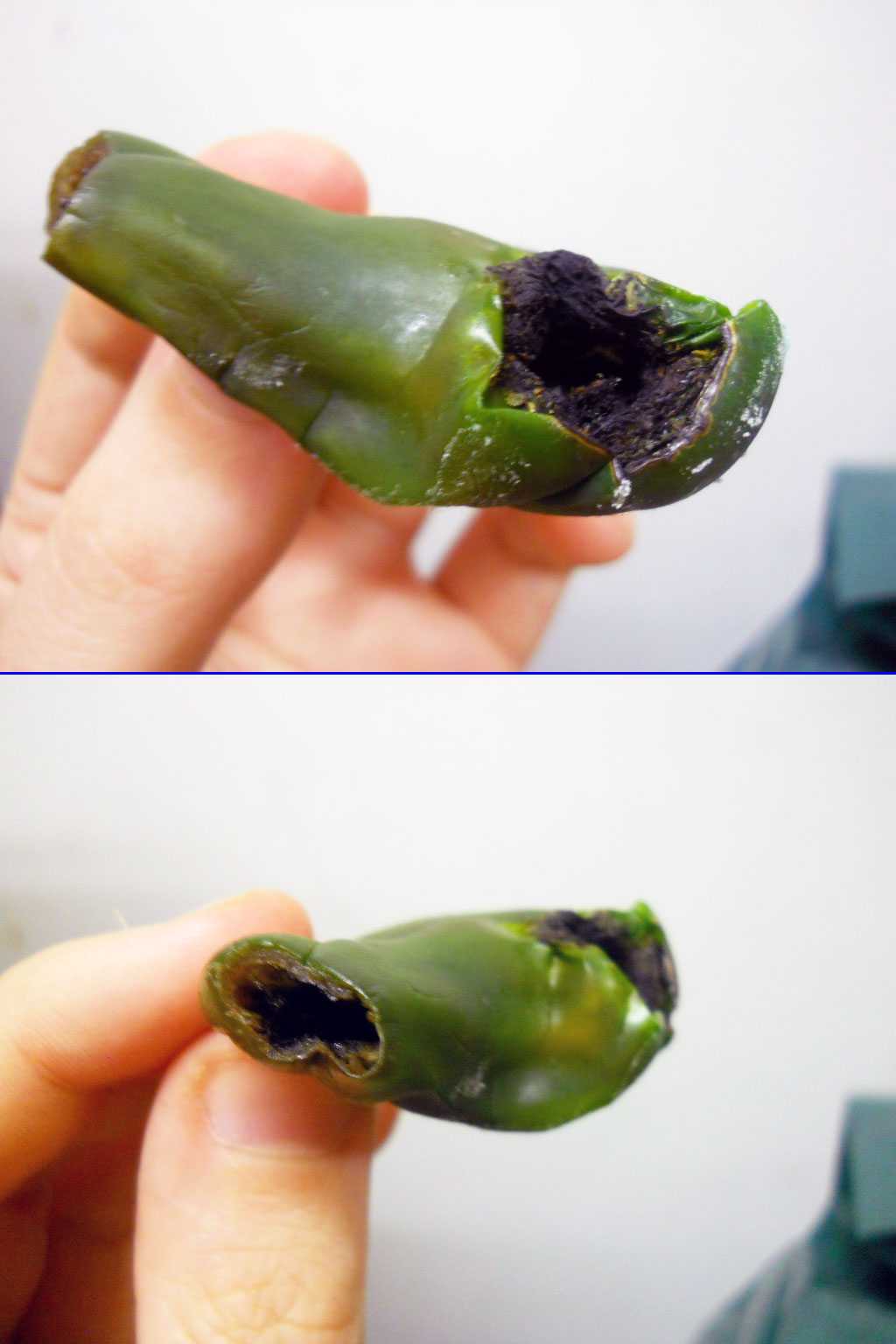 jalapeno_pipe_rotten