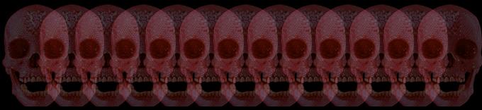 skullbanner
